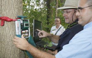 Bryan Pijanowski in forest using technology to collect audio samples.
