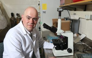 Steve Lindemann in lab with microscope.