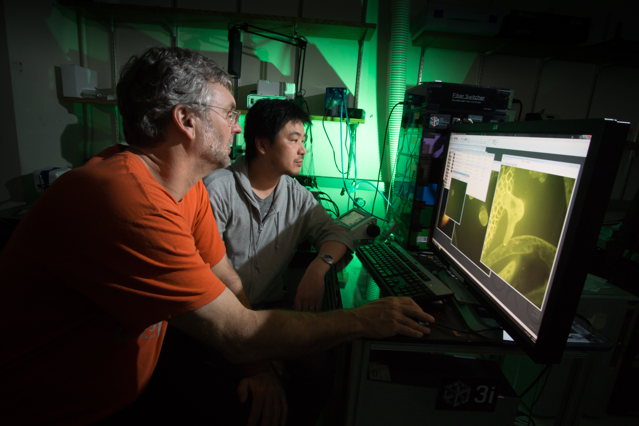 Purdue scientist develops method to  identify thousands of protein complexes and their location, in one shot