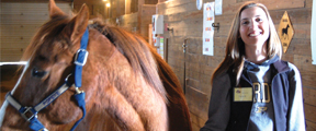 Volunteer combines love of horses with helping those with disabilities