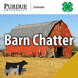Barn Chatter logo with 4h clover and photo of red barn