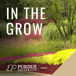In The Grow Column Logo with Purdue 2020 Brand