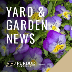 Yard and Garden Column Logo with Purdue 2020 Brand