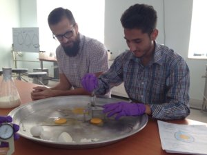 Herat University student measures albumin height