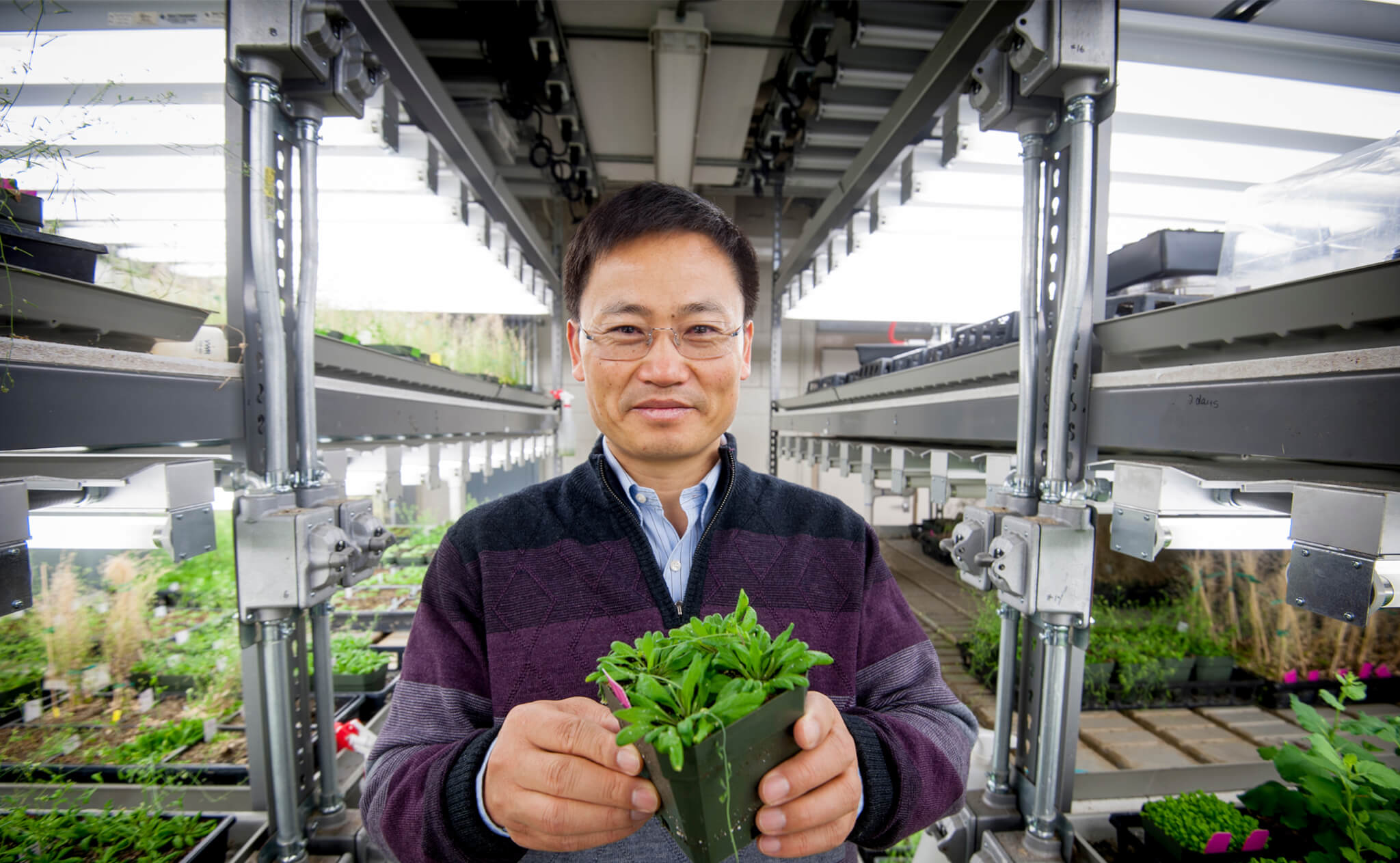 Dr. Jian-Kang Zhu holds a plant in the lab
