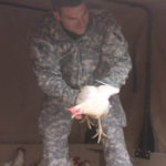 Lomont unloads chickens from the back of a vehicle