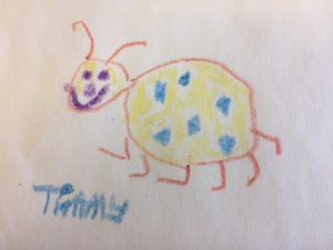 Happy insect drawing