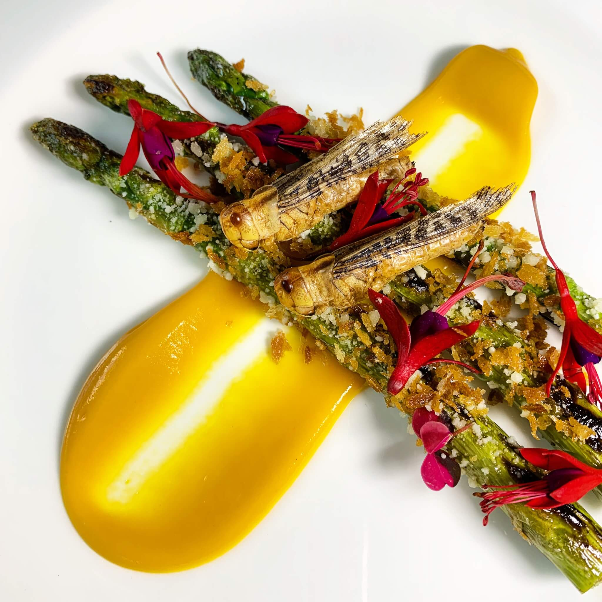 This locus asparagus is one of the many dishes prepared by Yoon with edible insects.