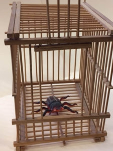 Spider in Bamboo Cage