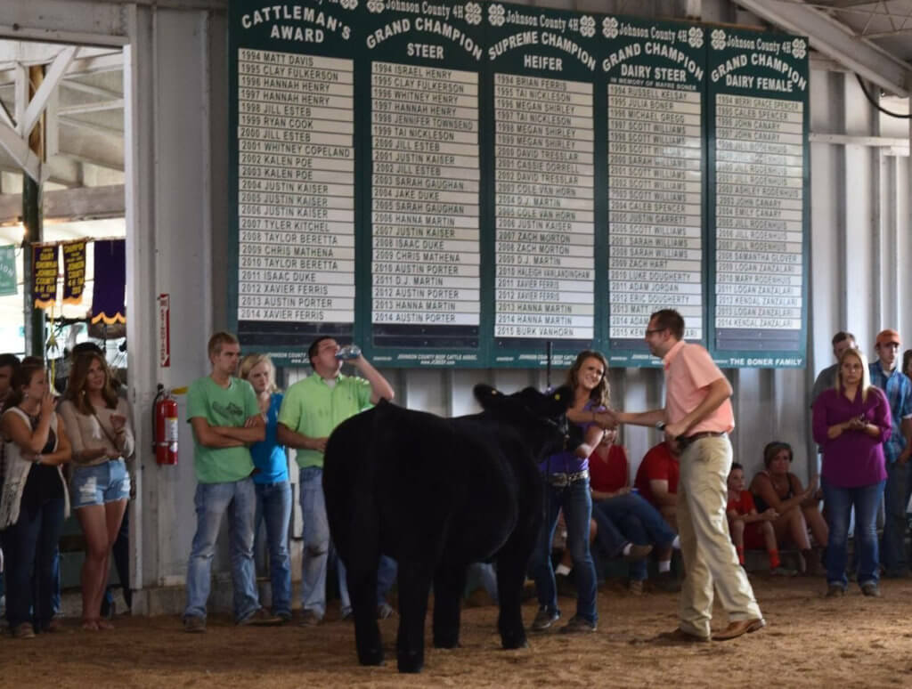 Samanthat Morris during a 4-H Showing in high school