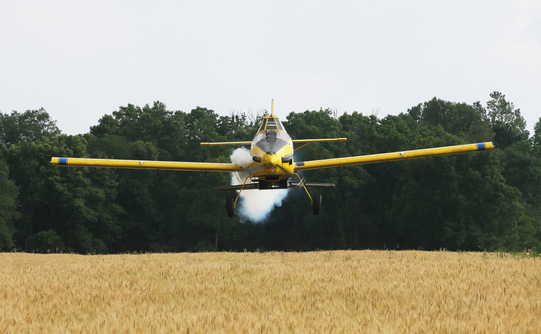 Pilot Tyler Rice flies well below the treeline, preparing to drop a load of soybeans on Kyle Blaydes' wheat field in Montgomery County.