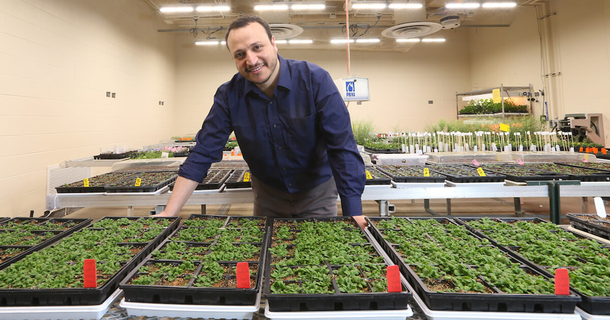 Omar Zayed smiling near his plants
