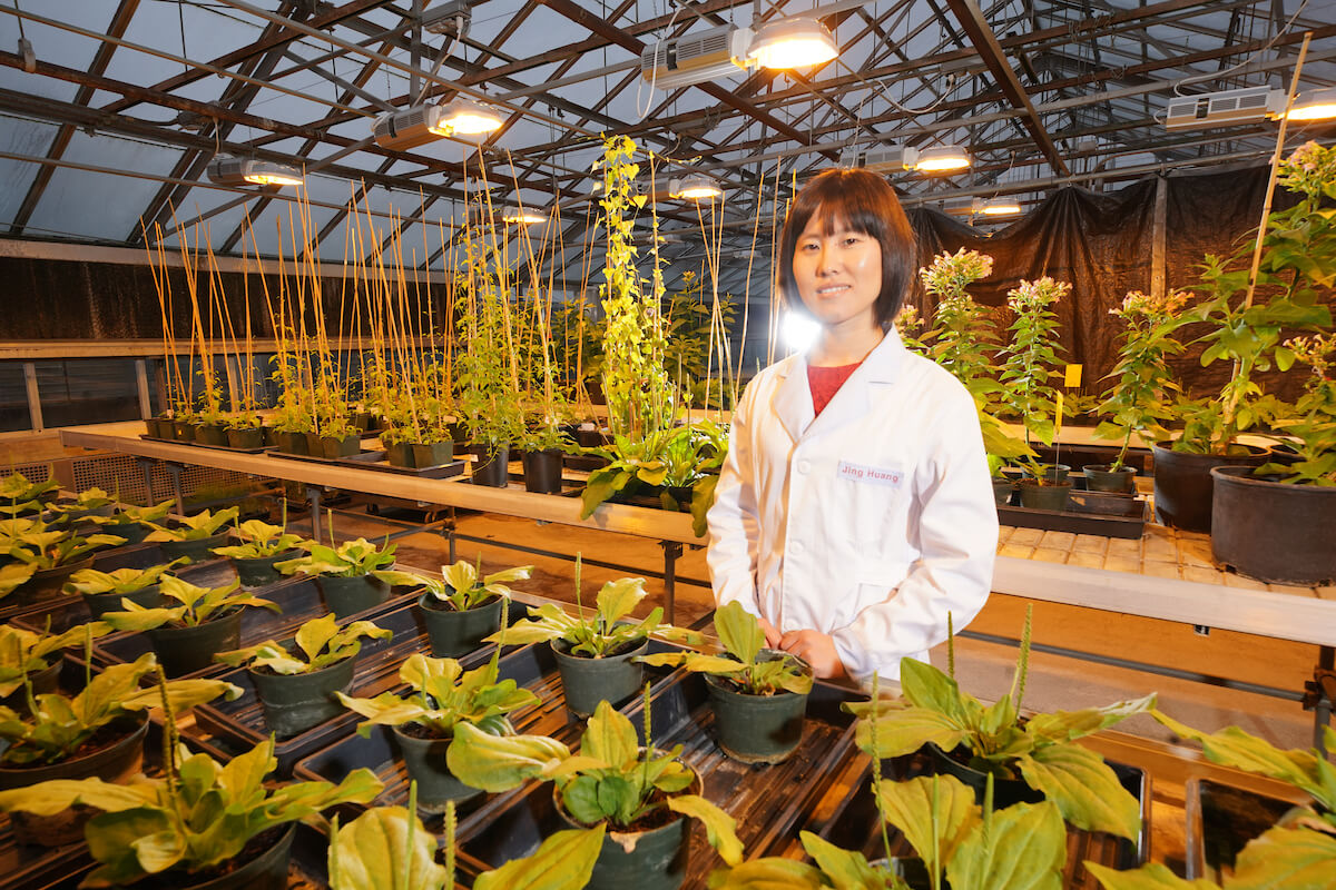 Jing Huang in lab coat with plants