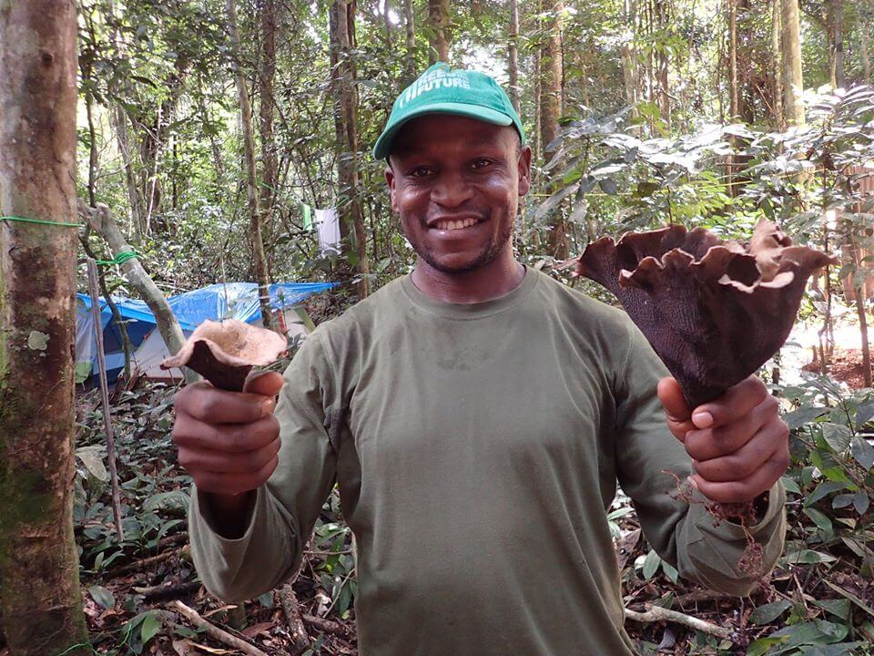 Jumbam holding a selection of mushrooms in Cameroon,