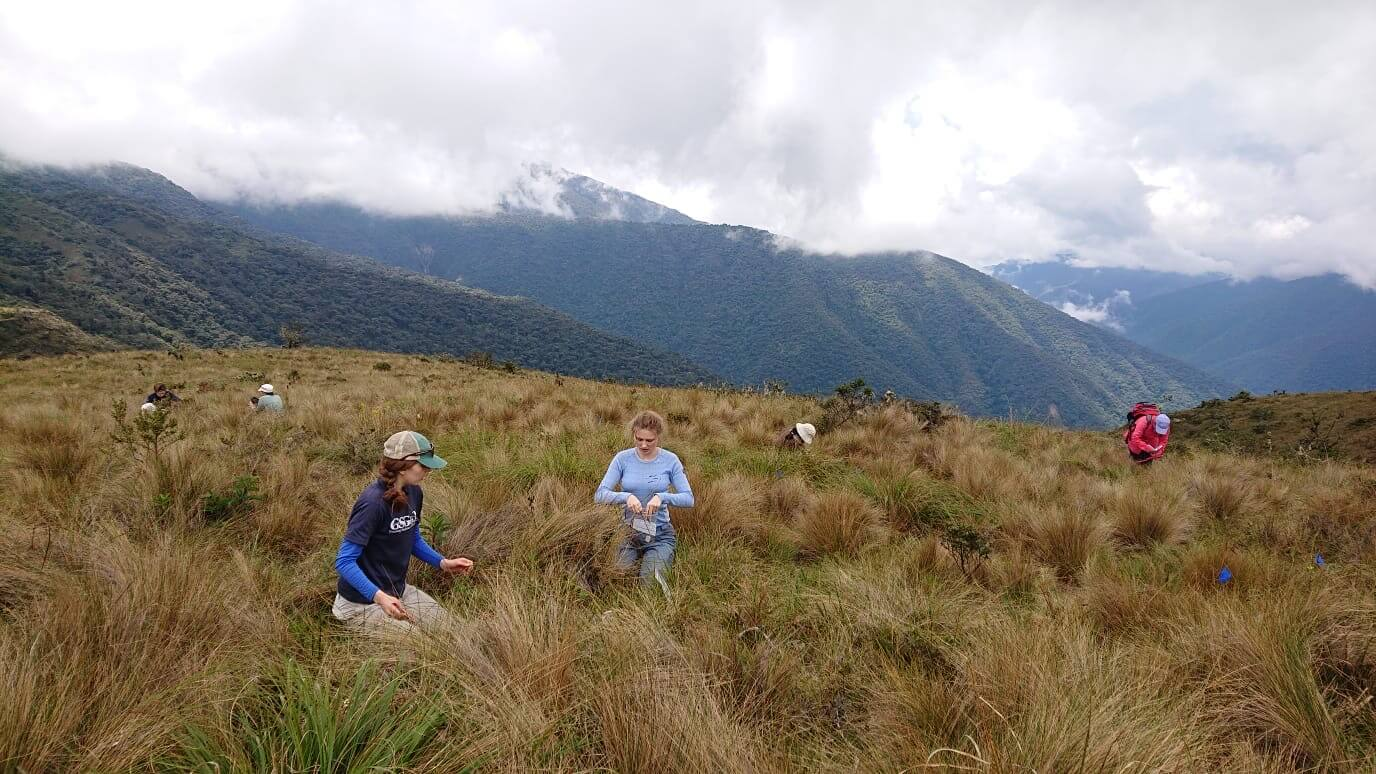 Jessup (in the blue shirt and baseball cap) works at Wayquecha Biological Station in the Andes. Photo provided by Laura Jessup.