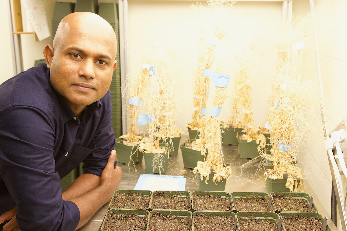 Sujith Puthiyaveetil with plants