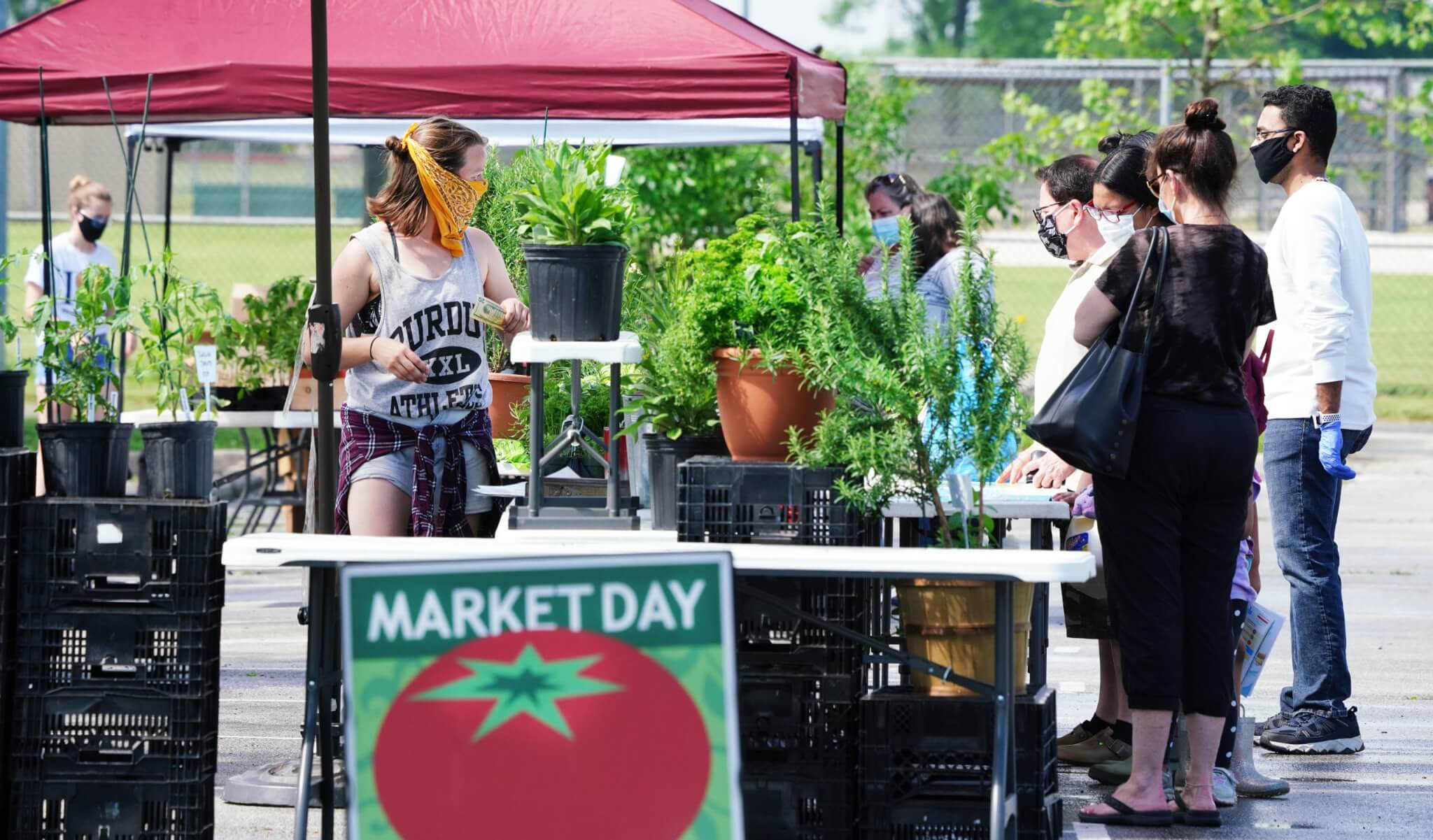 West Lafayette, IN farmers market. Photo by Tom Campbell.