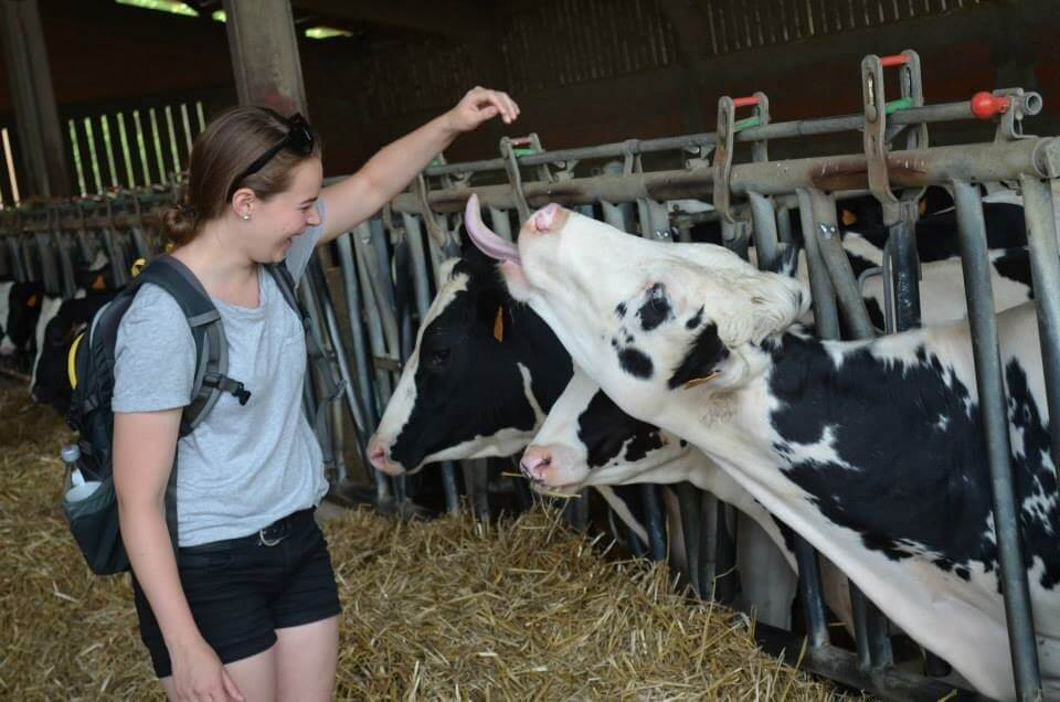 Mary Schneider with cow