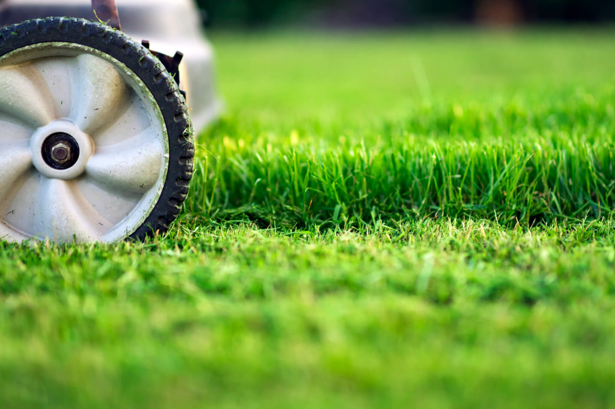 Mower wheel on grass