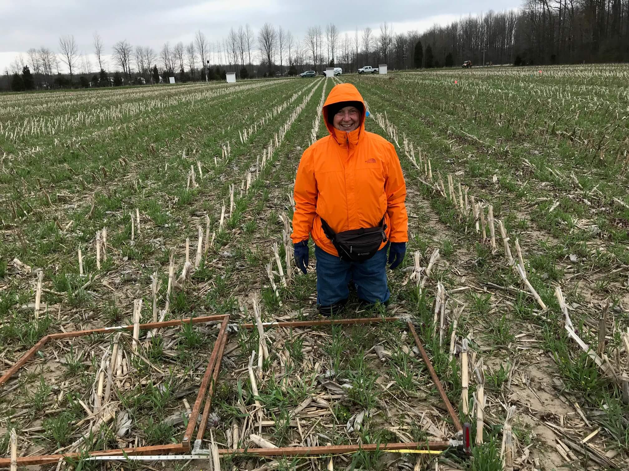 In a field. Eileen Kladivko performed a 35-year research project at SEPAC on field tile drainage.