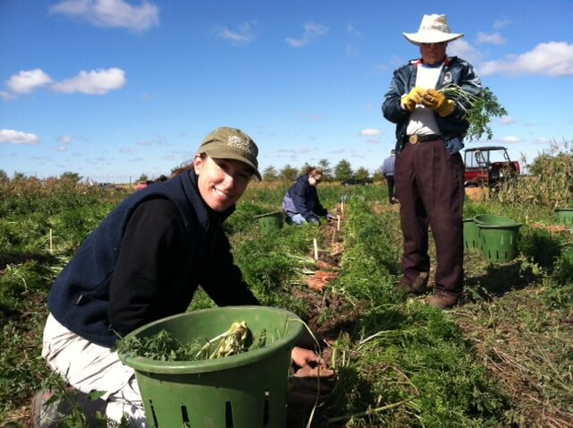 Lori Hoagland Carrot Harvest