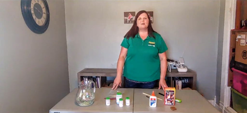 One activity from the July STEM calendar was to show kids how fireworks get their colors.