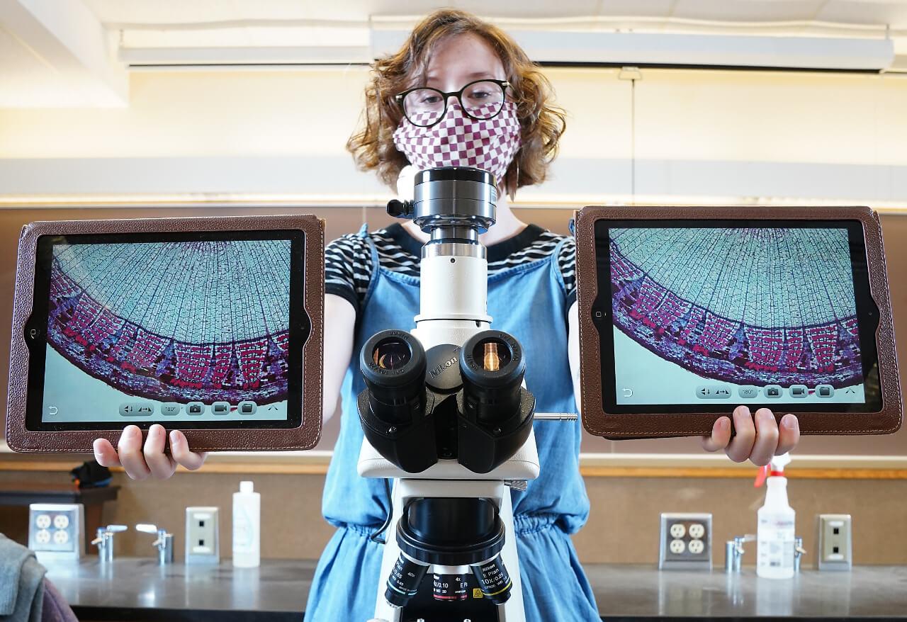 Mia Brann microscopes
