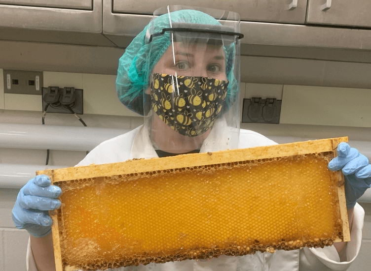 Alyson McGovern in full PPE during the honey extraction process at the Pilot Plant.