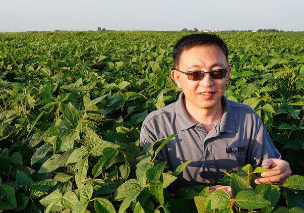 Ma in field