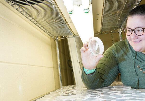 McCoy under lights in lab